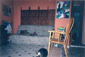 rue Etienne Dolet la salle à manger avec chat